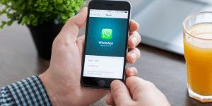 WhatsApp no atendimento de escolas